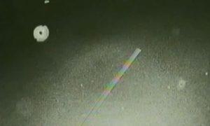 Presunte creature aliene riprese durante la missione dello Shattle STS-75