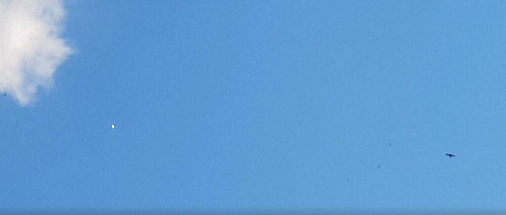 Ufo segnalatoci da Palermo