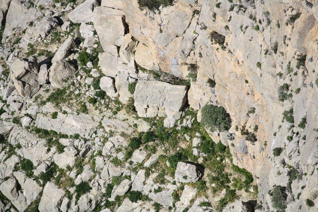 Monte Pecoraro